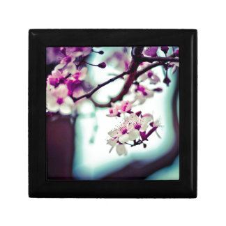 Pastel cherry blossom photo gift box