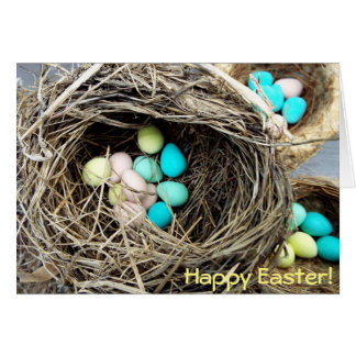 Pastel Easter eggs in real bird's nest photograph Card