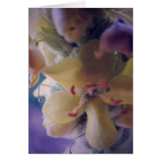 Pastel Flowers Card