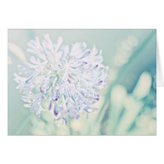 Pastel Flowers Cards