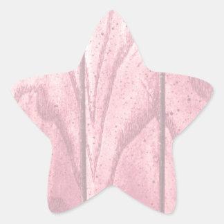 Pastel Grunge Wood Texture Star Sticker
