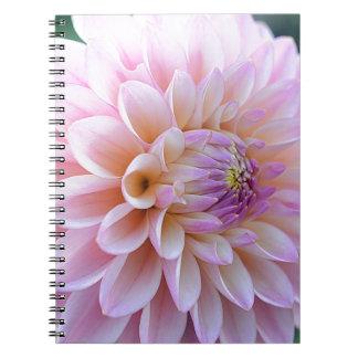Pastel Hued Dahlia Notebooks