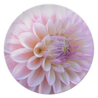 Pastel Hued Dahlia Plate