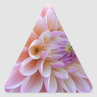 Pastel Hued Dahlia Triangle Sticker