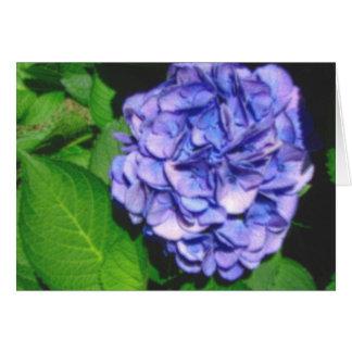pastel hydrangea notecard