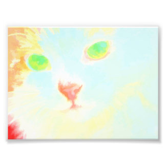 Pastel Maine Coon Cat Image Photo Print 6'' x 4''