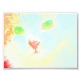 Pastel Maine Coon Cat Image Photo Print 6 x 4