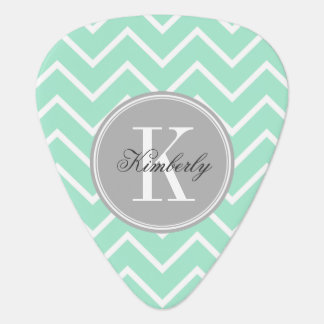 Pastel Mint Chevron with Gray Chevron Guitar Pick