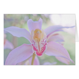 Pastel Orchid Greeting Card