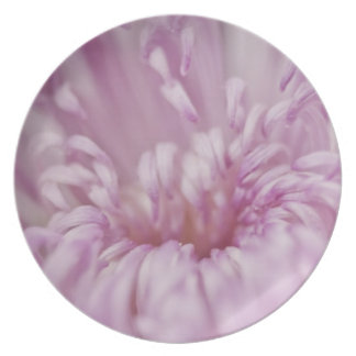 Pastel Pink Flower Plate