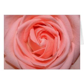 pastel pink rose greeting card