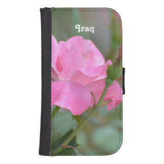 Pastel Pink Rose in Iraq