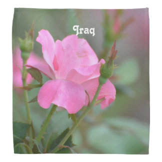 Pastel Pink Rose in Iraq Bandanna