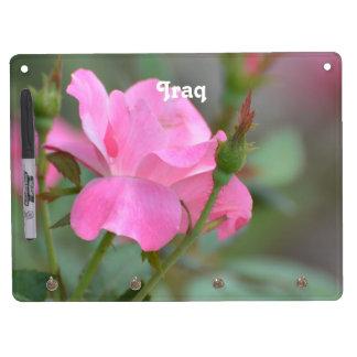 Pastel Pink Rose in Iraq Dry-Erase Whiteboard
