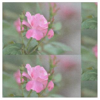 Pastel Pink Rose in Iraq Fabric