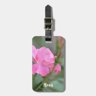 Pastel Pink Rose in Iraq Luggage Tag