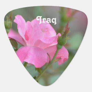 Pastel Pink Rose in Iraq Plectrum