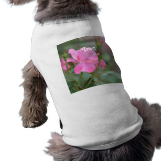 Pastel Pink Rose in Iraq Sleeveless Dog Shirt
