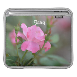 Pastel Pink Rose in Iraq Sleeves For iPads