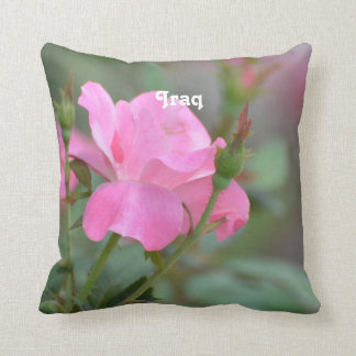 Pastel Pink Rose in Iraq Throw Pillow