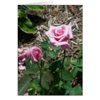 Pastel Rose Buds Card - A Rose Speaks Forever