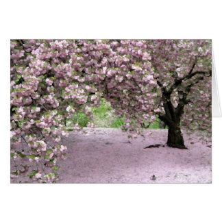 Pastel Serenity Card
