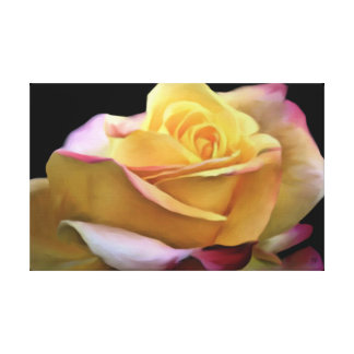 Pastel Yellow Rose Canvas Proofed