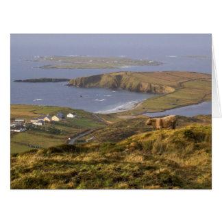 Pastoral Irish Coast Big Greeting Card