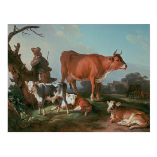 Pastoral scene with a cowherd postcard