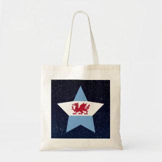 Patagonia Flag Star In Space Budget Tote Bag