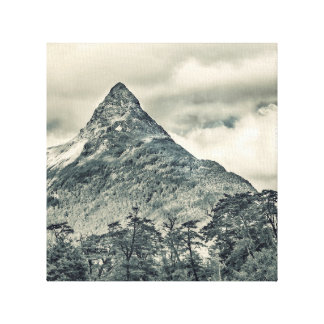 Patagonia Forest Landscape, Aysen, Chile Canvas Print