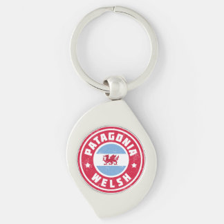 Patagonia Welsh Flag Silver-Colored Swirl Key Ring