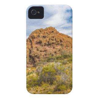 Patagonian Landscape, Argentina iPhone 4 Case-Mate Case