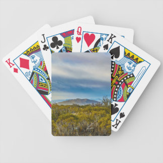 Patagonian Landscape Scene, Santa Cruz, Argentina Bicycle Playing Cards