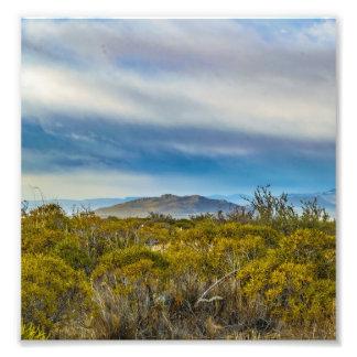 Patagonian Landscape Scene, Santa Cruz, Argentina Photo Print