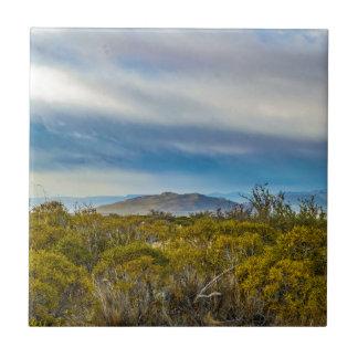 Patagonian Landscape Scene, Santa Cruz, Argentina Tile