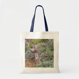 Patas Monkey Tote Bag