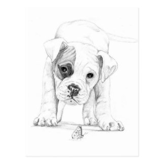 Drawings Of Puppies Gifts T Shirts Art Posters amp Other Gift Ideas Zazzle