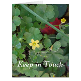 Patch of Clover Card
