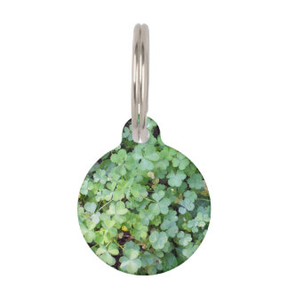 Patch of Clover Pet ID Tag