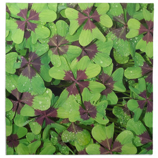 Patch of Four Leaf Clover (Sorrel) after Rain Napkin
