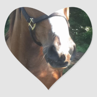 Patch the Horse Collection Heart Sticker