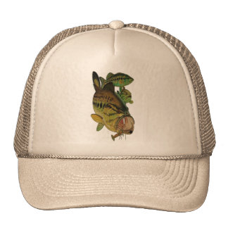 Patch Trucker Cap - Fishing Products