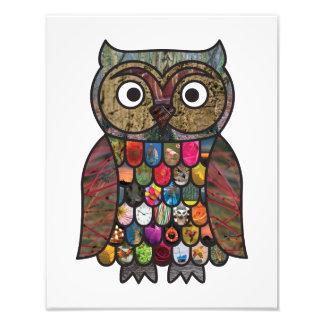 Patchwork Owl Photographic Print