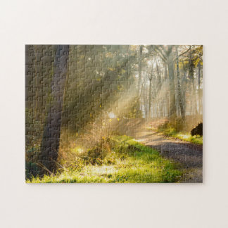 Path in forest with rays of sunlight jigsaw puzzle