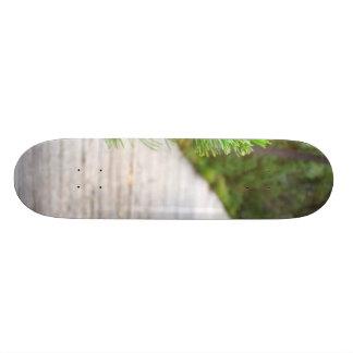Path In Peat Moors In Sumava National Park Skate Board Deck