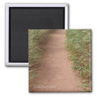 Path in the dunes magnet