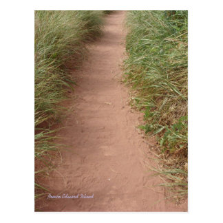 Path in the dunes postcard