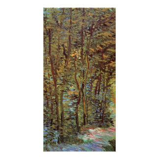 Path in the Woods by Vincent van Gogh Customized Photo Card
