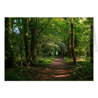 Path in the Woods Card